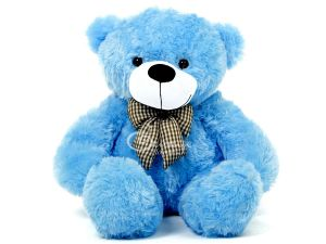 teddy Bear for boy