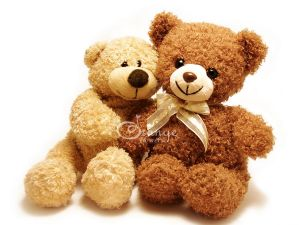 cute teddy bears