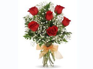 6 roses bunch